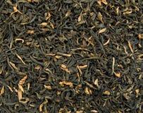 Tè del Assam Fotografia Stock Libera da Diritti