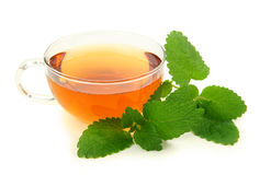 Tè del balsamo di limone Fotografia Stock Libera da Diritti