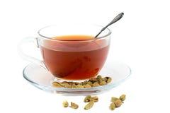 Tè del cardamomo verde Fotografie Stock Libere da Diritti