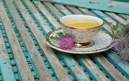 Tè del cardo selvatico di latte fotografia stock libera da diritti