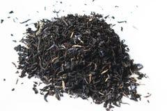 Tè del conte e bustina di tè grigi Fotografia Stock