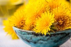 Tè del dente di leone Fiori del dente di leone e tazze di tè gialli Fotografie Stock Libere da Diritti