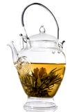 Tè del fiore Immagini Stock Libere da Diritti