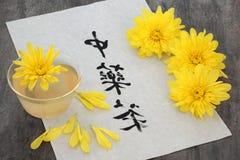 Tè del fiore del crisantemo Fotografia Stock Libera da Diritti