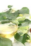 Tè del fiore del Linden con la caramella Fotografia Stock