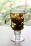 Tè del gelsomino Immagini Stock