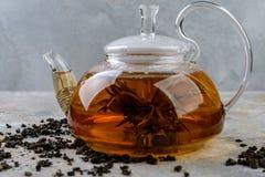 Tè del gelsomino con i fiori del gelsomino Fotografia Stock Libera da Diritti