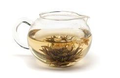 Tè del gelsomino. Fotografia Stock Libera da Diritti
