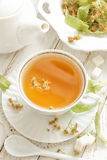 Tè del Linden Fotografia Stock