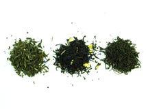 Tè dell'erba isolato su bianco Fotografia Stock Libera da Diritti