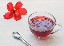 Tè dell'ibisco e compressa della medicina Fotografia Stock Libera da Diritti