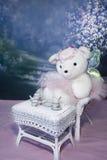 Tè dell'orsacchiotto N della ballerina Immagine Stock Libera da Diritti