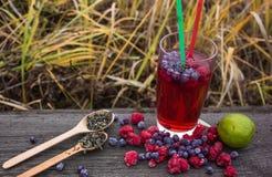Tè della bolla con il melograno, il tè verde ed il lampone su un fondo di legno Fotografia Stock Libera da Diritti