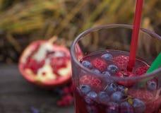 Tè della bolla con il melograno, in una mano della ragazza Fotografia Stock Libera da Diritti