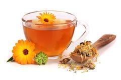 Tè della calendula con i fiori freschi e secchi isolati su fondo bianco Immagini Stock