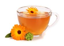 Tè della calendula con i fiori freschi isolati su fondo bianco Fotografia Stock Libera da Diritti