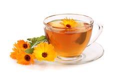 Tè della calendula con i fiori freschi isolati su fondo bianco Immagini Stock