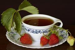 Tè della fragola Fotografia Stock