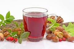 Tè della frutta con i cinorrodi Fotografie Stock Libere da Diritti