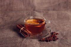 Tè della frutta con le spezie ed i biscotti Fotografie Stock Libere da Diritti