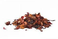 Tè della frutta secca Immagine Stock