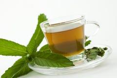 Tè della menta con la foglia della menta fresca intorno Immagine Stock Libera da Diritti