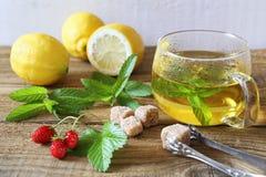 Tè della menta in una tazza di vetro con i limoni e la fragola Fotografia Stock Libera da Diritti