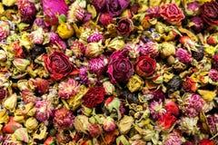 Tè delle rose rosse Immagini Stock Libere da Diritti