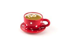 Tè di camomilla in tazza Fotografia Stock