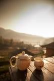 Tè di camomilla in tazza Immagine Stock