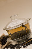 Tè di Dankong del miele in Gaiwan Fotografia Stock Libera da Diritti