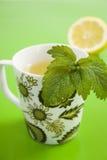 Tè di erba con il limone e la citronella Fotografia Stock Libera da Diritti