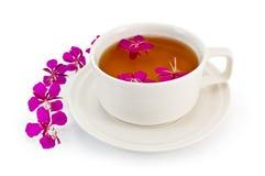 Tè di erbe in una tazza bianca con il fireweed Immagini Stock