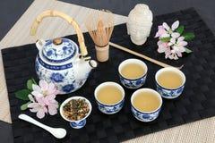 Tè di Genmaicha Fujiyama del giapponese Fotografie Stock