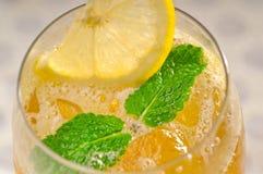 Tè di ghiaccio di rinfresco Immagini Stock Libere da Diritti