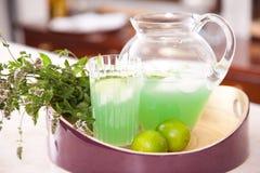 Tè di ghiaccio fresco dalla spremuta di limone Fotografia Stock Libera da Diritti