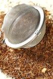 Tè di Rooibos con il filtro del tè Immagini Stock
