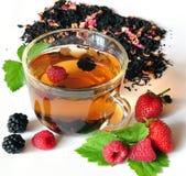 Tè e bacche Immagine Stock