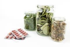 Tè e pillole - natura contro scienza Fotografia Stock Libera da Diritti