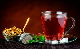 Tè ed ingredienti rossi Fotografia Stock Libera da Diritti