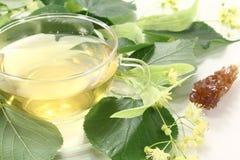 Tè fresco caldo del fiore del linden Fotografia Stock Libera da Diritti
