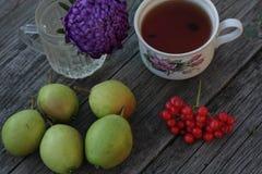 tè fresco del raccolto della pera sulla natura Immagine Stock Libera da Diritti