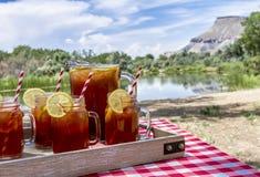 Tè ghiacciato al picnic a Grand Junction, Colorado Fotografia Stock