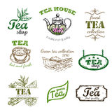 Tè Logo Set di schizzo Immagini Stock Libere da Diritti