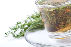 Tè medicinale del timo su fondo bianco Fotografie Stock