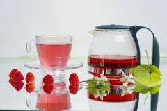 Tè naturale del lampone Immagini Stock Libere da Diritti