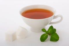 Tè nero con la menta Fotografia Stock Libera da Diritti