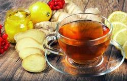 Tè per freddo ed influenza Limone, zenzero, kiwi e viburno per tè per un freddo Fotografia Stock Libera da Diritti
