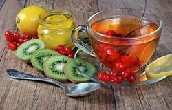 Tè per freddo ed influenza Limone, zenzero, kiwi e viburno per tè per un freddo Immagini Stock Libere da Diritti