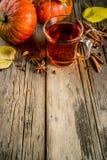 Tè piccante della zucca fotografie stock libere da diritti